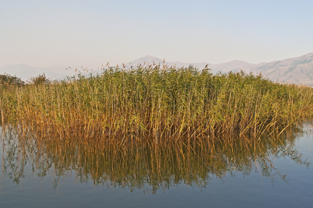 southeast europe: Prespa lake, Greece. Prespa is the name of two freshwater lakes in southeast Europe, shared by Albania, Greece, and the Republic of Macedonia.