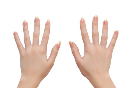 Woman hands isolated on white background Stock Photo