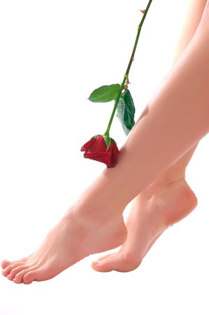 Beautiful woman legs with red rose on white background