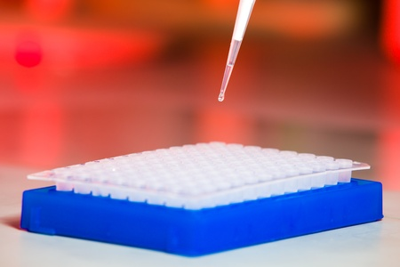 Side, red background, drop on tip of pipette above cell plate photo