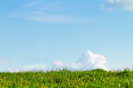 Green grass with blue sky, lot of copy space Stock Photo - 13713847