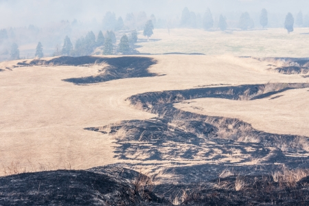 Traces of controlled grass burning near Mount Aso Stock Photo - 13713845