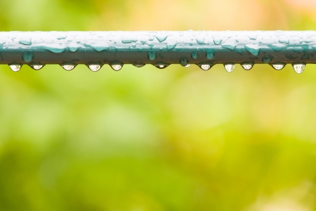 Raindrops on a fence in city park or garden photo