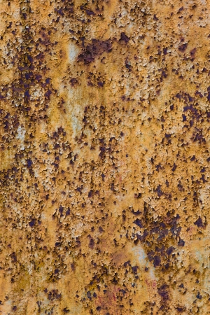 Tall version of heavily rusty grungy brown texture photo