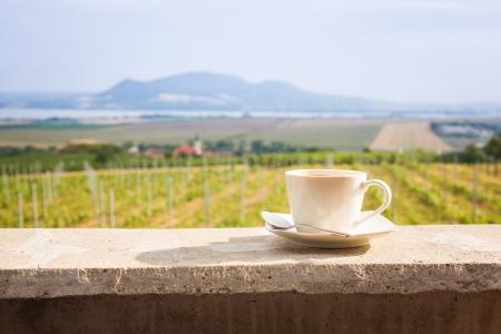 Kopje koffie met een wijngaard en Palava heuvels achter, Tsjechië Stockfoto - 25109079