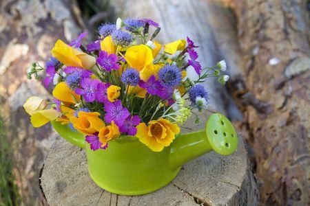 watering pot: bunch of wild flowers in the  watering pot
