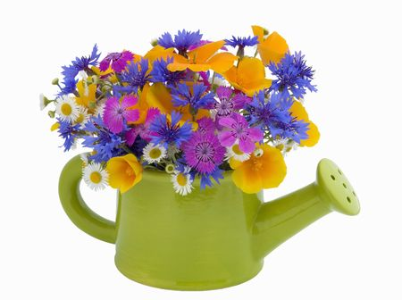 watering pot: bunch of flowers in the  watering pot isolated on white background