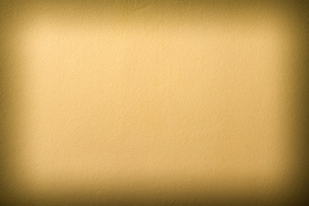 textured  piece of beige leather, as a background photo