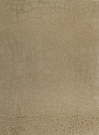fragment of the painted  stone  wall, made as a crocodile skin, in beige color Stock Photo - 8979340