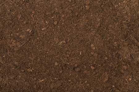 peat soil as a background photo