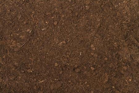 soil: terreno di torba come sfondo Archivio Fotografico