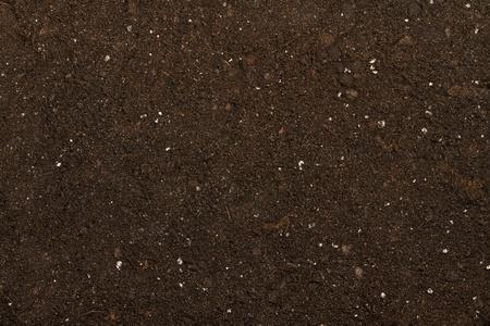 turba: turba del suelo como un fondo Foto de archivo