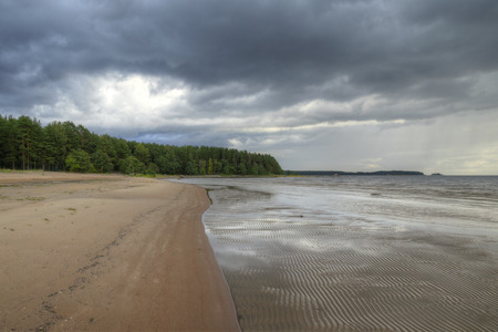 Beautiful Scenic View of Gulf Forest and Barren Beach