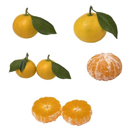 Set of fresh ripe tangerines isolated on white background. Close up view.