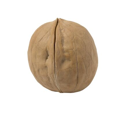 Walnut isolated on a white background. Close up view.