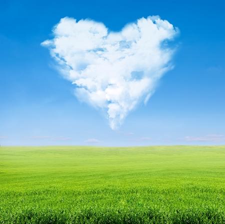 corazones azules: campo de hierba verde sobre el cielo azul con nubes en forma de coraz�n