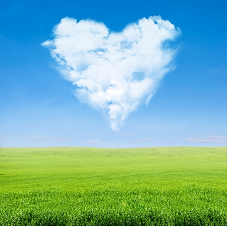 field of green grass over blue sky with clouds in shape of heart photo