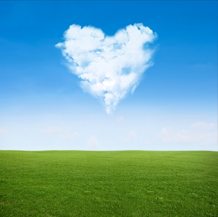 green grass field and blue sky with clouds in shape of heart - love concept photo