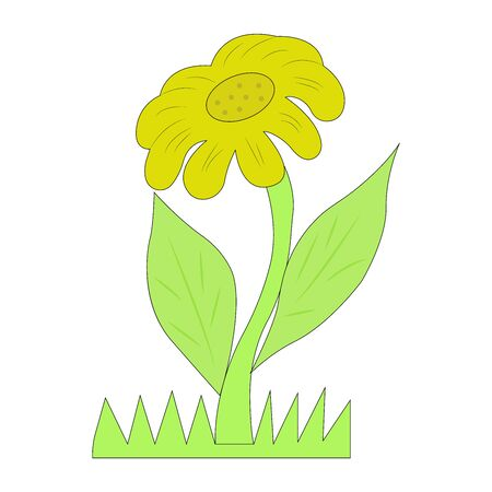 colorful flowers,  blossom flower, sunflower vector illustration. Vettoriali