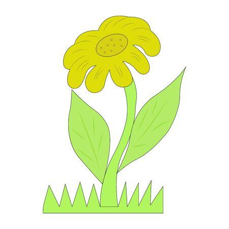 colorful flowers,  blossom flower, sunflower vector illustration. Illustration
