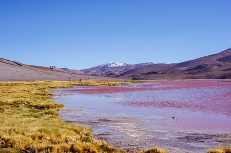altiplano: Mountains of Bolivia, altiplano, desert and green landscapes, trees and rocks, sand and water, sky and earth. Beautiful views of South America. Stock Photo