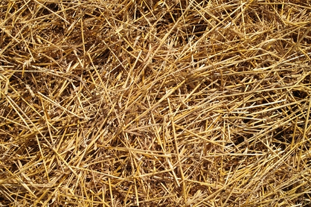 bad idea: Straw on the ground on a sunny day.