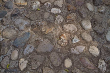 Stone pavers. Kolomenskoe park. Moscow photo