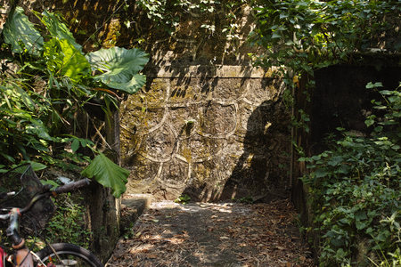 Stone wall in the jungle photo