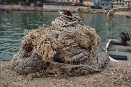 mammal: Marine mammal rope Stock Photo