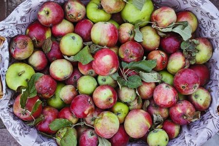 chock: Ripe apple in the basket, wedding decor Stock Photo