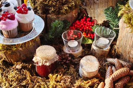chock: Forest Candy bar, decorated with fresh berries with delicious cakes. Wedding decor decorations for weddings forest. Stock Photo