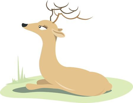 wild venison: Illustration of a horn dear resting in a grass land