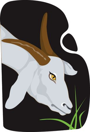 horned: Illustration of a brown horned goat eating grass. Stock Photo