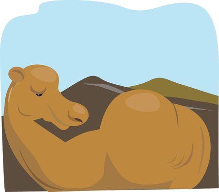 Illustration of a camel lying in a desert  illustration