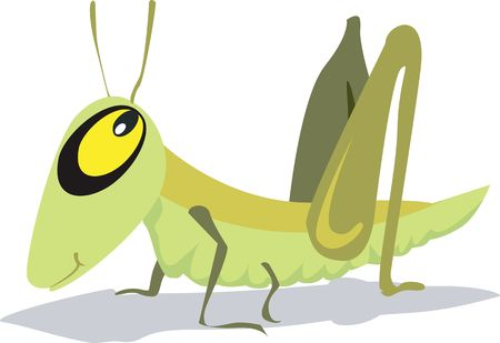 wooing: Illustration of a yellow eyed grasshopper wooing with eyes open