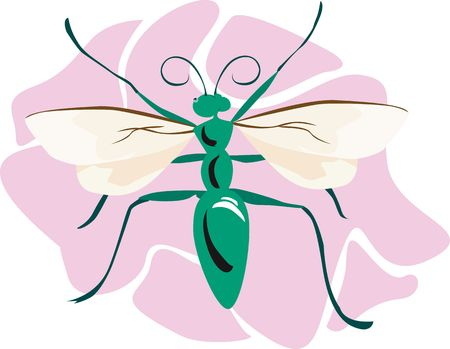 Illustration of a green body coloured bee on a pink surface  illustration