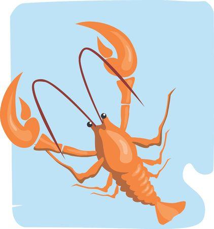 Illustration of a shrimp in blue background     illustration