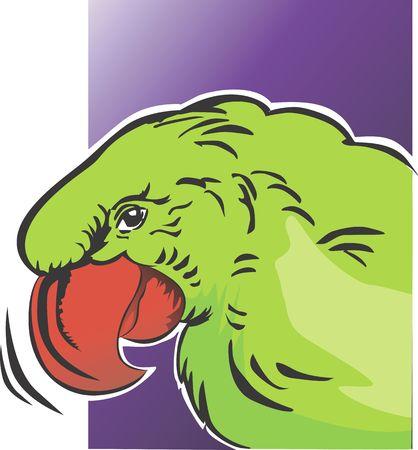 beaks: Illustrazione di un pappagallo con forte becchi