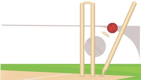 cricketer: A cricket ball is hitting the stumps  Stock Photo