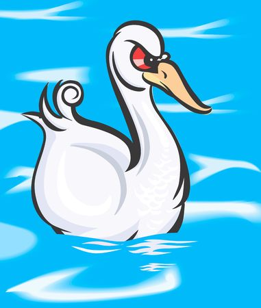 freshwater bird: Illustration of a swan swimming in water  Stock Photo
