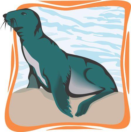 Illustration of sea lion looking for something  illustration