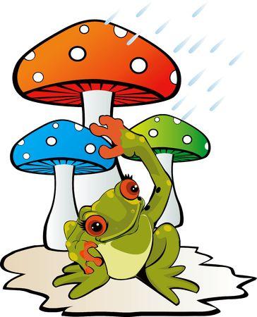 Illustration of mushroom with a toad  illustration