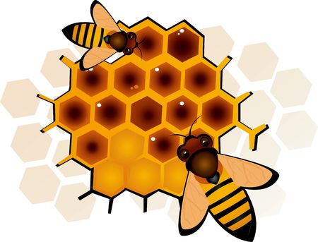 Illustration of two honeybees in honeycomb Stock Illustration - 3008641