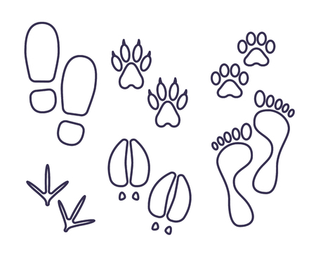Traces of human and amimals, outline tracks, trials of cat, dog, bird, cow, human vector