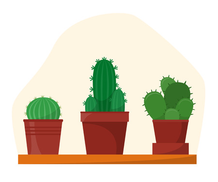 Cactus set in flat style, home plants in pots on shelf, vector illustration