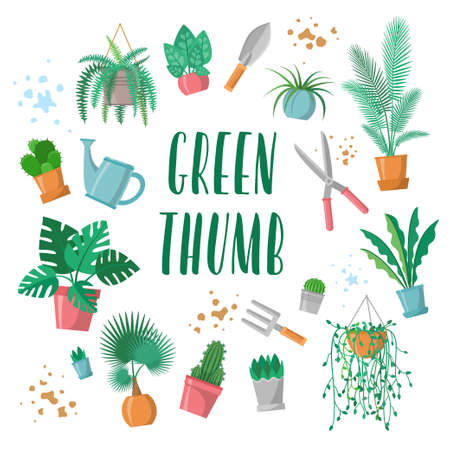 Green thumb lettering with garden tools set, home plants in pots collection, phrase for plants and gardening lover. Flowerpots, scissors, fork, trowel, watering pot, palm, cactus, fern. Flat vector