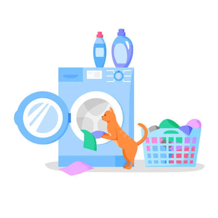 Cat looking in open washing machine, laundry basket with clothes, bottles with liquid detergents, vector flat illustration. 矢量图像