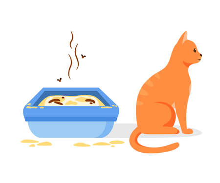 Cat not using dirty litter box. Wrong way to maintain cat toilet. Pet toilet hygiene concept. Flat vector illustration