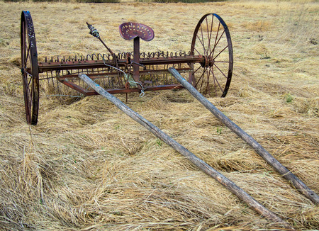 Horse Drawn Rake standing in the field