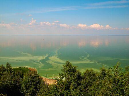 summer flowering of water in the lake Ilmen Novgorod region Russia